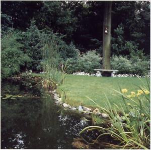 Een gras gazon zaaien 3