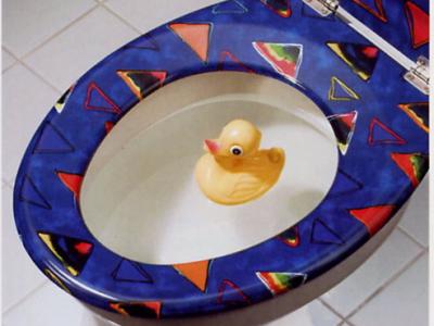 Riool afvoer of wc verstopt