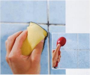 Schimmel verwijderen uit badkamer » Klus-info.nl » Uw hulp voor ...