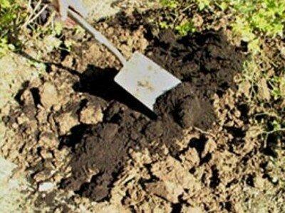 Vruchtbaarder maken grond
